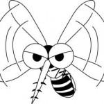 蚊を潰さずに退治する方法があった!これで蚊なんかもう怖くない。